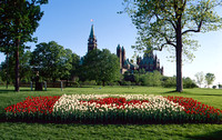 Canada's Flag in Tulips at Major's Hill Park