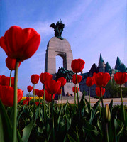 The Response (the National War Memorial) Confederation Sq.