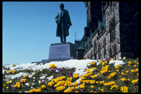 Statue of Sir Wilfred Laurier on Parliament Hill with crocuses